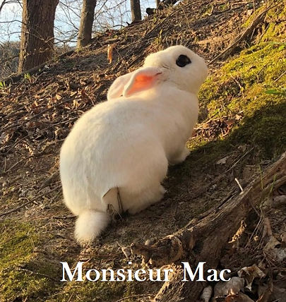Monsieur Mac PB.jpeg