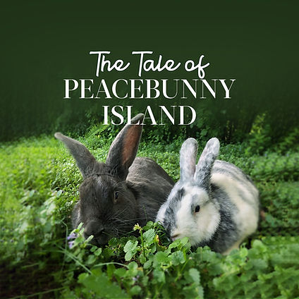 Huckleberry Peacebunny and Bandit, two rabbits in the pasture at Peacebunny Cottage, getting ready for their journey to Peacebunny Island.  These rabbits are the inspiration behind the Calm Sleep Story, the Tale of Peacebunny Island