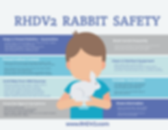 RHDV2 Rabbit Safety final.png