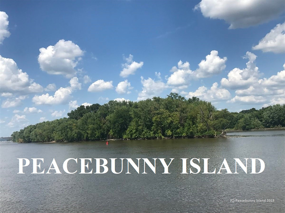 Heading up river by boat to Peacebunny Island, a private island on the Mississippi River owned by Caleb Smith for training therapy rabbits