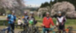 sakura_ride_top.jpg