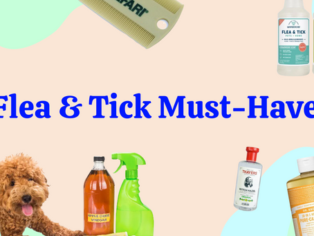 8 must-haves for flea and tick season