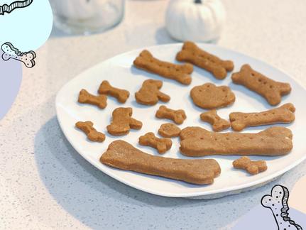 Homemade Pumpkin Peanut Butter Dog Treats