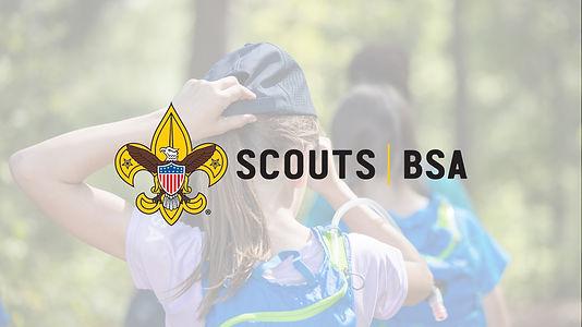 ScoutsBSALPCover.jpg