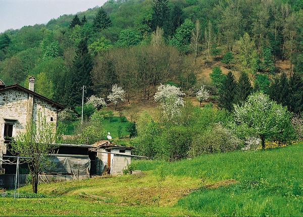 Frisanco 0029 Colvere.JPG