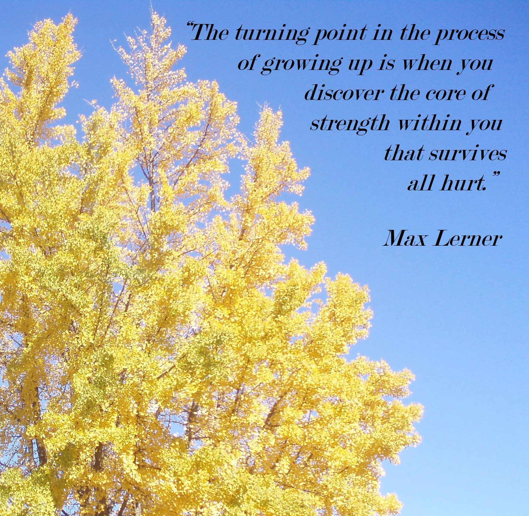 Max Lerner. The Turning Point.