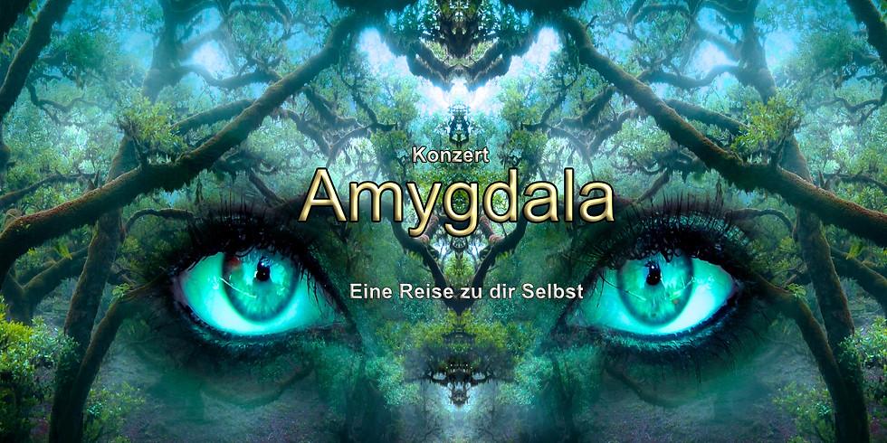 Konzert Amygdala