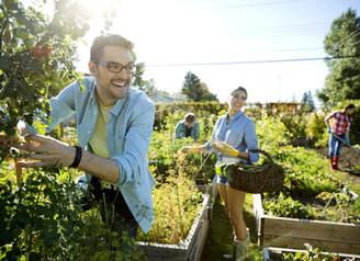 Prevent Alzheimer's with Vegetables