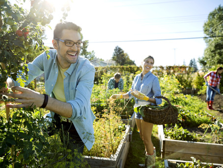 Top 10 reasons you should join a community garden
