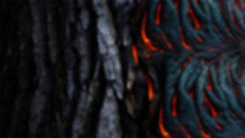 pexels-photo-983200_edited.jpg