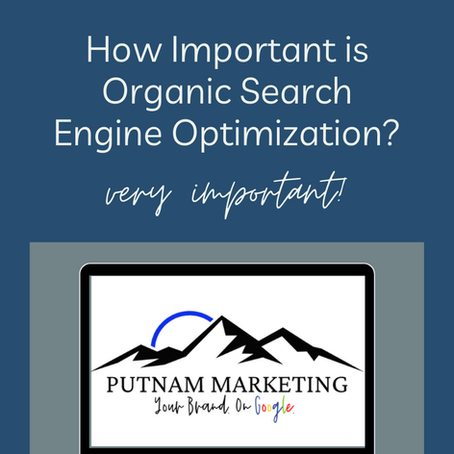How Important is Organic Search Engine Optimization?