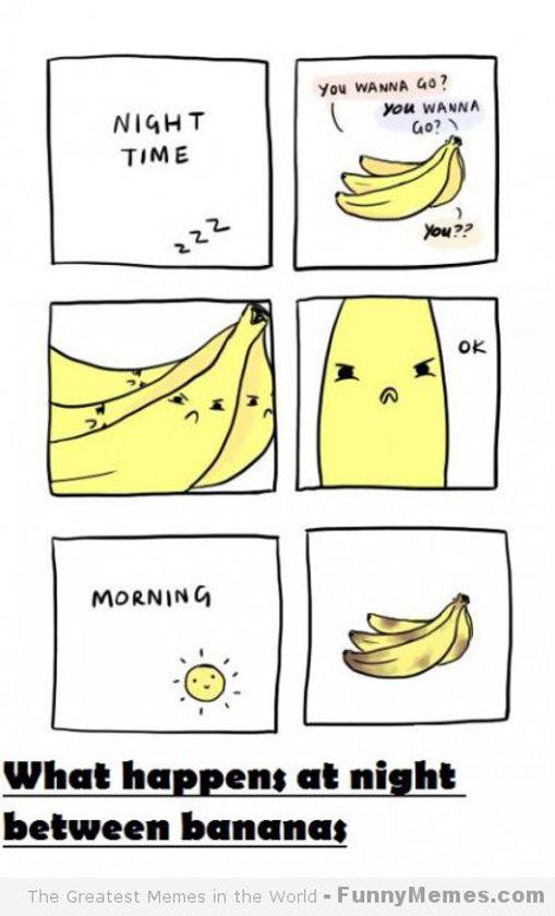 banana-blog