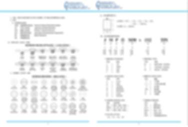 Standard punch PDF