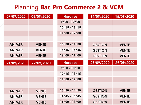 CCE 2 & VCM.png