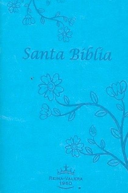 Biblia Tamaño Manual RVR 1960, Imitación Piel Turquesa Con Índice
