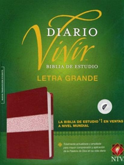 Biblia De Estudio Diario Vivir, NTV, Letra Grande, SentiPiel Vino Tinto, Índice