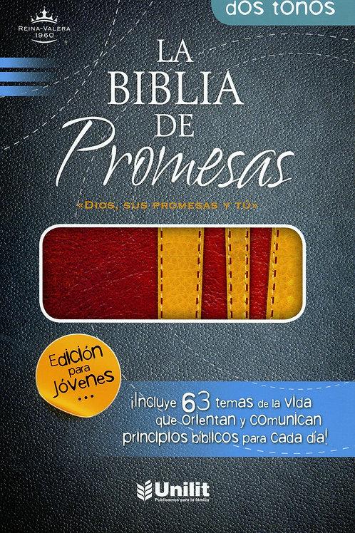 Biblia De Promesas Edición Jóvenes RVR 1960, Piel Especial Marrón-Amarillo