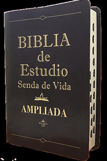 Biblia de estudio Ampliada piel marrón con índice RVR 1960