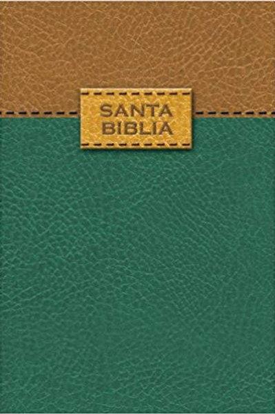 Biblia Tamaño Bolsillo Tapa Flexible Antigua Versión 1909
