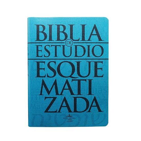 Biblia De Estudio Esquematizada RVR 1960, Pasta Flexible