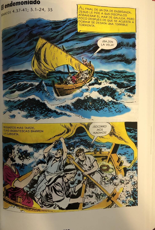 Thumbnail: Biblia ilustrada, Pasta dura