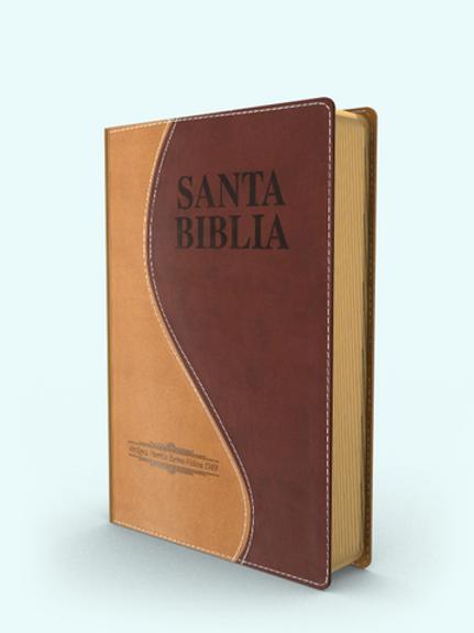 Biblia letra grande tamaño manual piel dos tonos Antigua Versión 1909