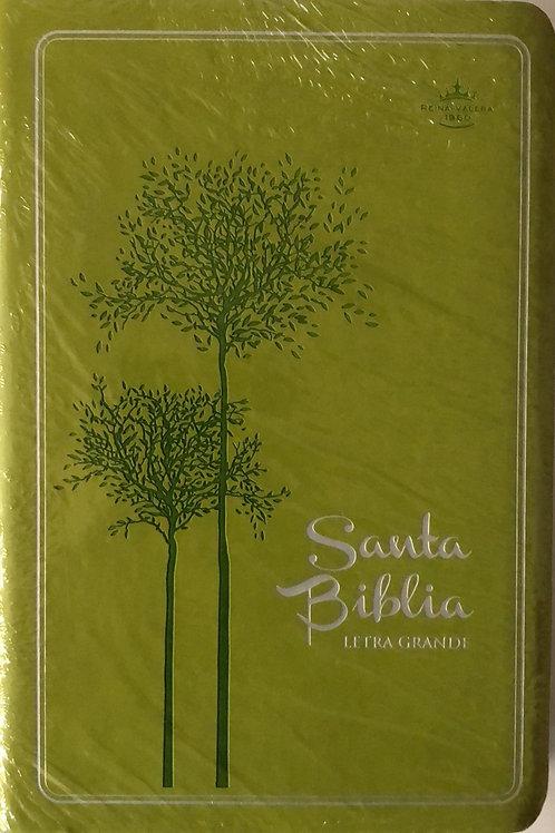 Biblia Letra Grande RVR 1960, Imitación Piel Verde