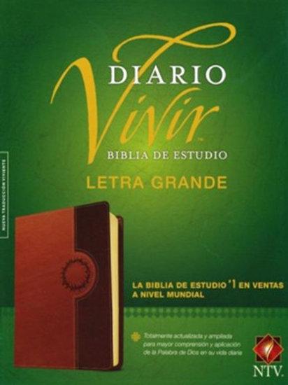 Biblia De Estudio Diario Vivir NTV, Letra Grande, SentiPiel Café - Café Claro