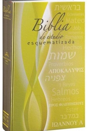 Biblia de estudio Esquematizada tapa dura Reina Valera 1960