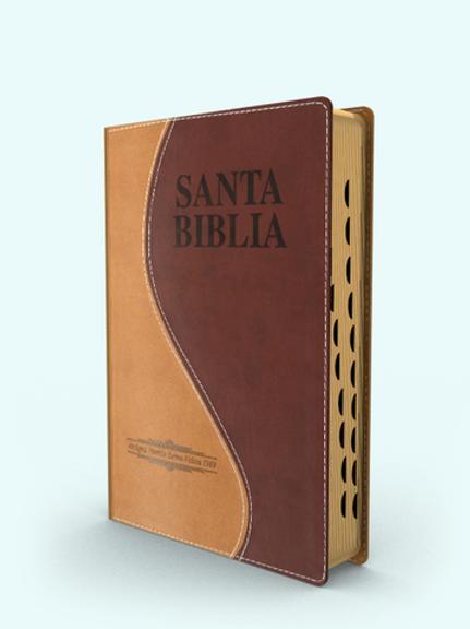 Biblia letra grande tamaño manual piel dos tonos con índice Antigua Versión 1909
