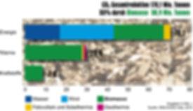 CO2 Reduktion durch Biomasse