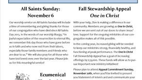 November Newsletter is available!