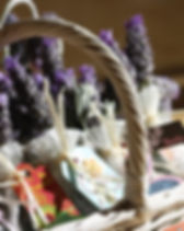 lavender-1902943_960_720.jpg