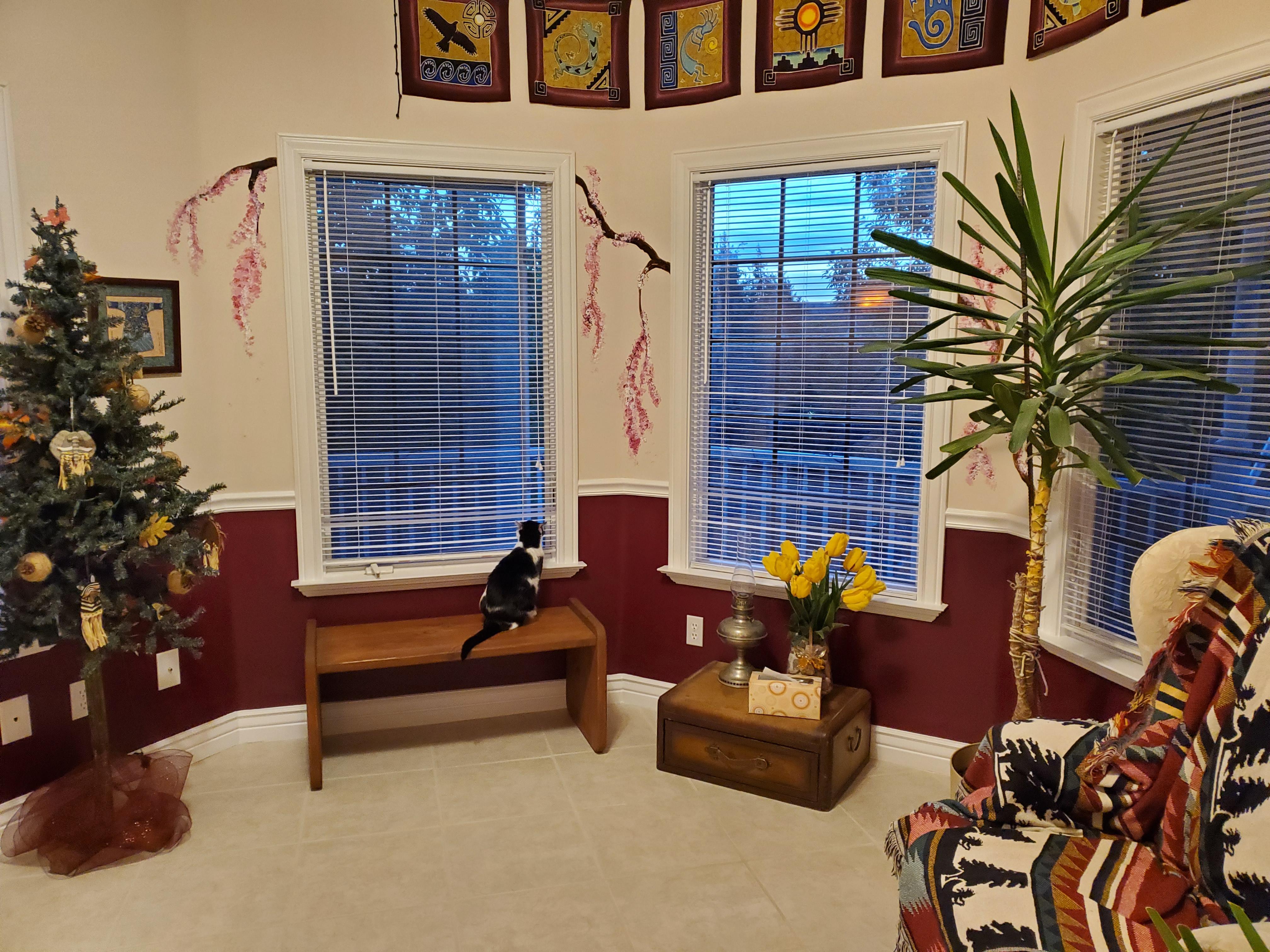 zen room 1