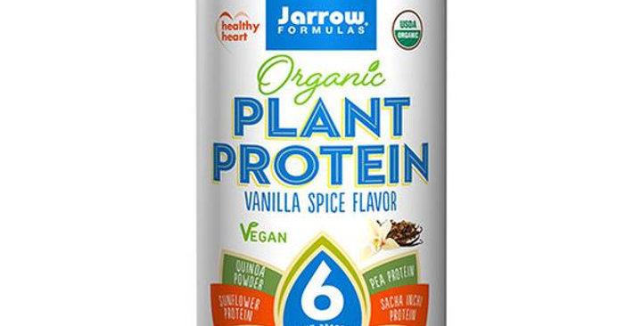 JARROW FORMULAS VANILLA SPICE ORGANIC PLANT PROTEIN POWDER 16 OZ.