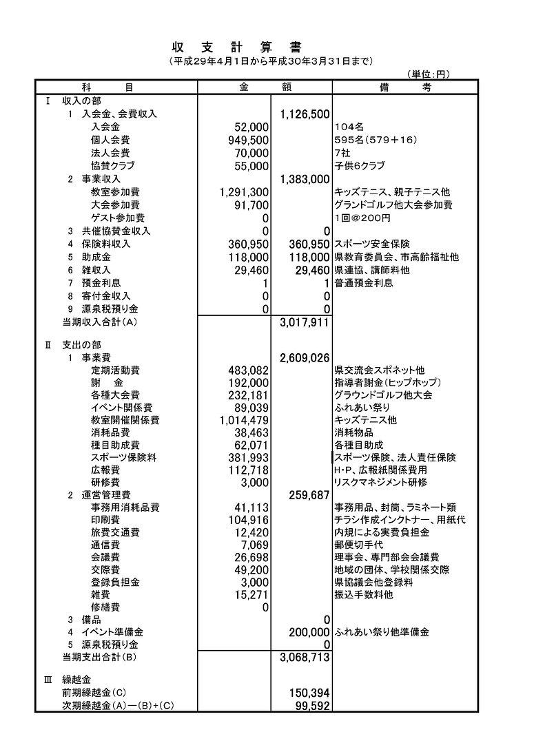 マウス収支計算書H29のコピー.jpg