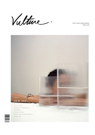 Vulture cover.jpg