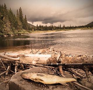 chasse, pêche, motoneige, randonnées, lacs, hiver, été, paddle, bateau, pleine nature, pourvoirie Damville nord lac St Jean Québec au Canada