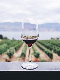 Montessori wine tasting.jpg