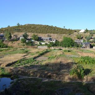 Rionor: Rihonor de Castilla and Rio de Onor