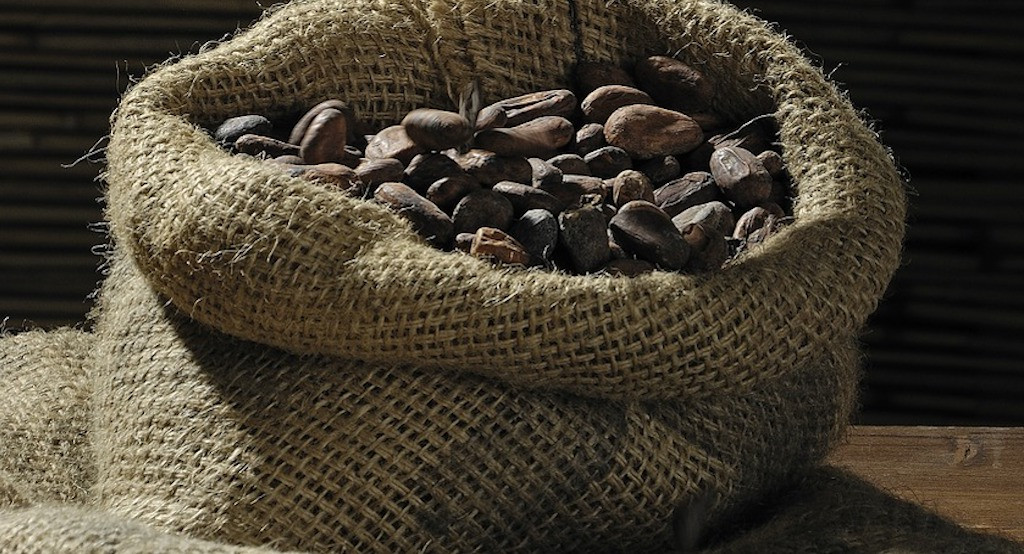 Fairtrade Fortnight: Everything You Need To Know