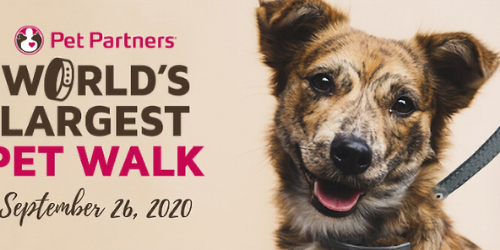 For the Puppies - World's Largest Pet Walk