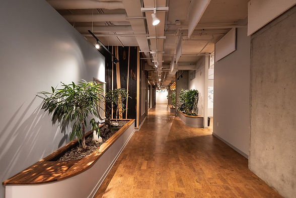 Commercial Electrical Contractor Ottawa