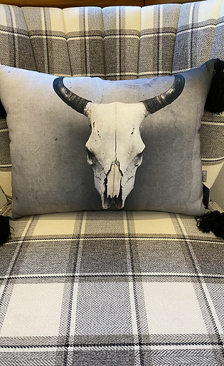 Long Horn Tassel Pillow