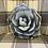 Thumbnail: Succulent Pillow