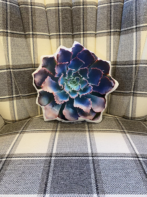 Purple Succulent Pillow