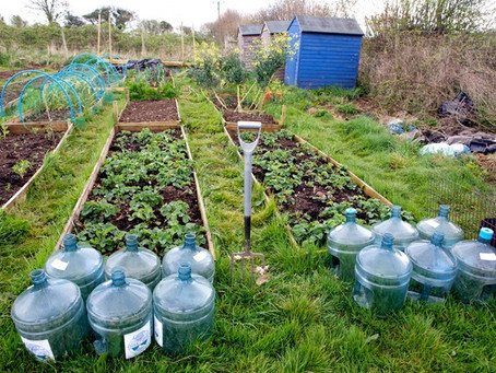 Farming the Urban Fringe