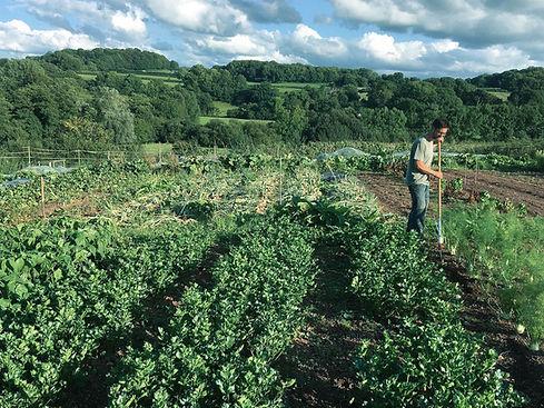 farming-the-future.jpg