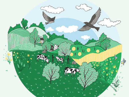 A New Cycle of Growth: Farming the Future 2020