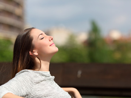 Focus on the breath: brain decoding reveals internal states of attention during meditation
